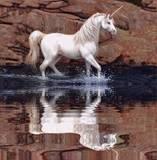 th_unicorninthewater